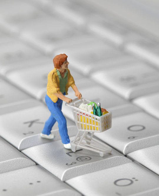 literature review online shopping project