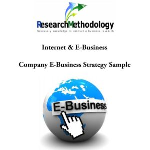 Company E-Business Strategy Sample