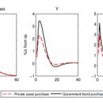 New Macroeconomic Theories