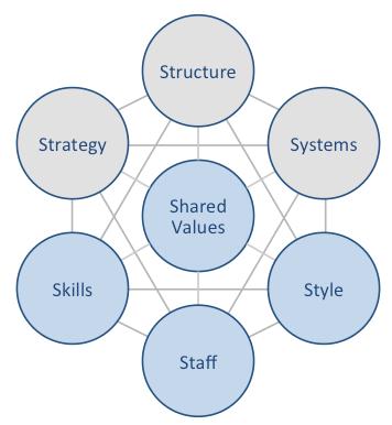 Apple McKinsey 7S Framework