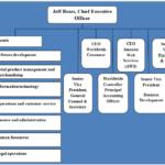 Amazon Organizational Structure