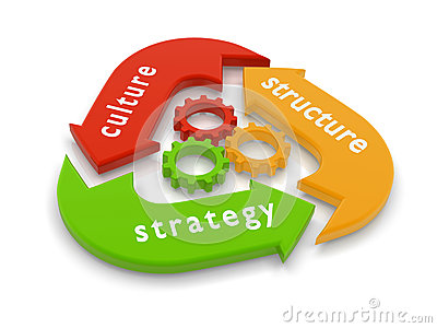 structure and culture of various organisations However, the divisional structure lets each product line excel, better serves customer niches and can cater to geographic and cultural differences matrix organization structures the matrix structure blends the functional and divisional structures, gaining the advantages of both.