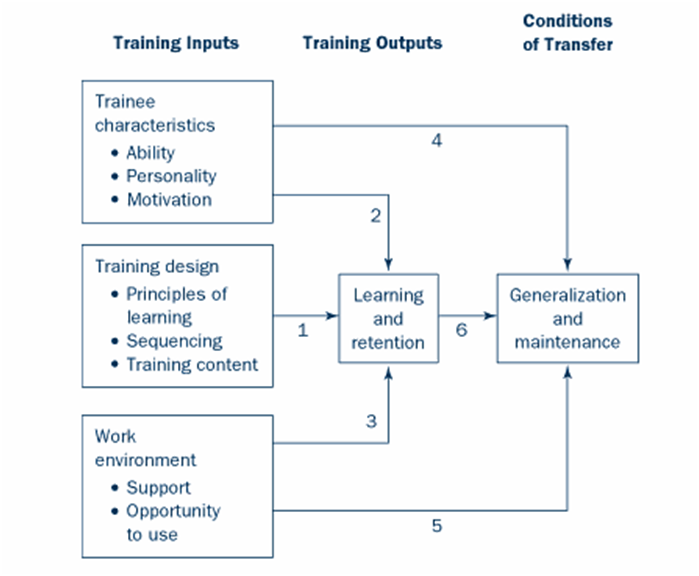Baldwin and Ford's Transfer of Training Model (1988)