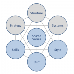 mckinsey 7s airline industry Strategic management insight works through porter's five forces framework determine the intensity of competition in your industry and its mckinsey 7s model.