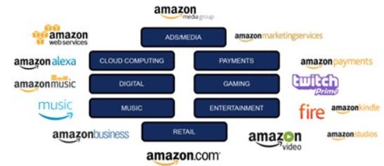 Amazon Ecosystem